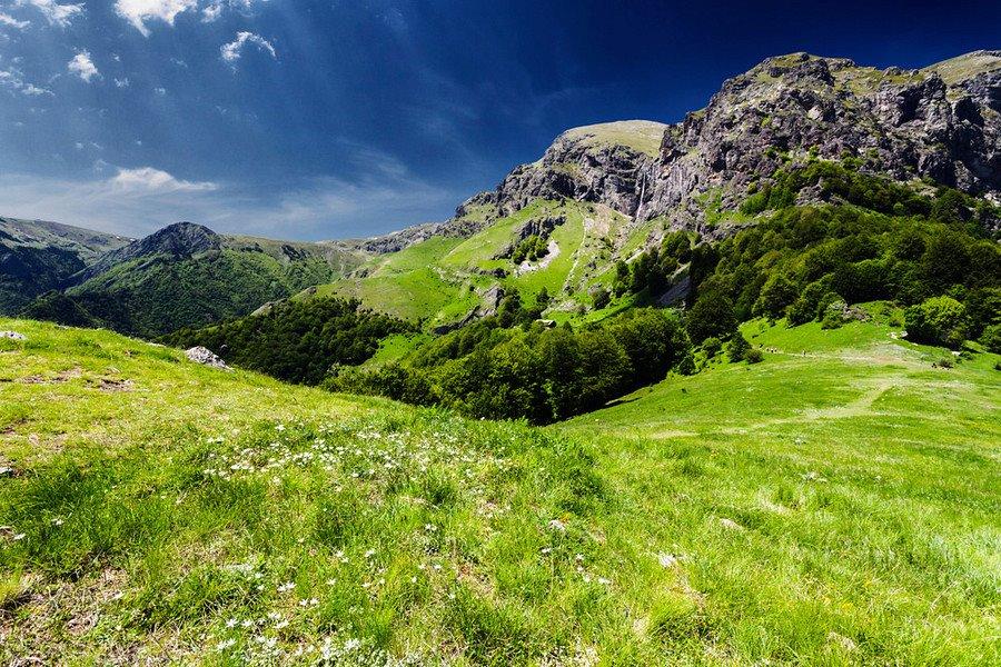 stara-planina-summer