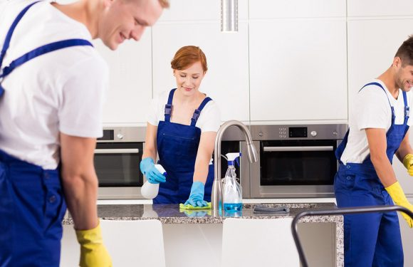 End of tenancy cleaning by you or cleaning company?